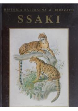 Historia naturalna w obrazach Ssaki