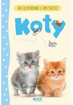 Jak się opiekować i zaprzyjaźnić - Koty