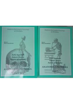 Anatomia człowieka, cz. I-II