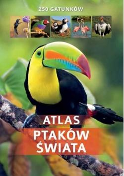 Atlas ptaków świata 250 gatunków/SBM