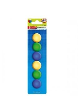 Magnes mix kolorów śr. 29 mm 6el