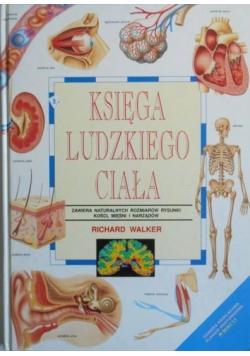 Księga ludzkiego ciała