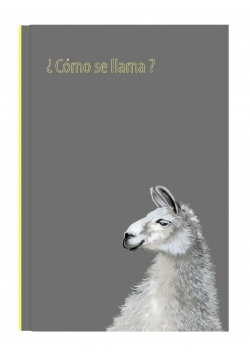 Notes Gee Llama 13,5x19,5 NARCISSUS