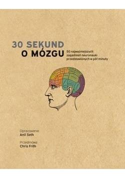 30 sekund. O mózgu
