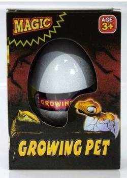 Jajo dinozaura, wykluwa się i rośnie.