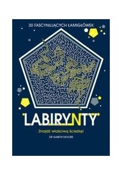Labirynty. 30 fascynujących łamigłówek