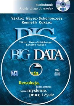 Big Data. Audiobook