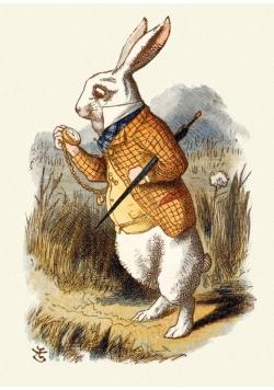 Karnet B6 z kopertą The White Rabbit