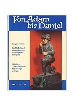 Von Adam bis Daniel