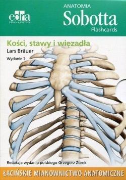 Anatomia Sobotta. Flashcards - Kości, stawy..łac.