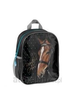 PLECAK PASO HORSE
