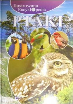 Ilustrowana encyklopedia Ptaki