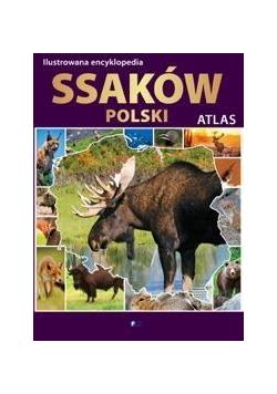 Ilustrowana encyklopedia ssaków Polski. Atlas