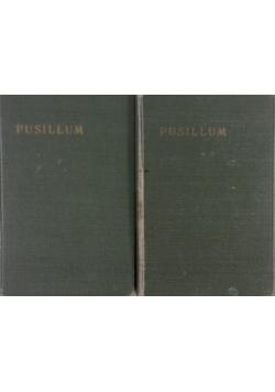Pusillum zwięzłe rozmyślania dla kapłanów, tom I, II, 1933r.