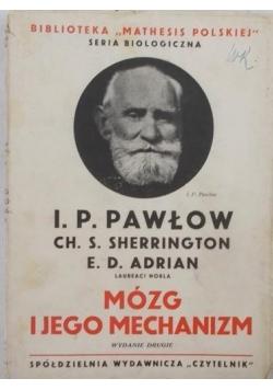 Mózg i jego mechanizm, 1935 r.
