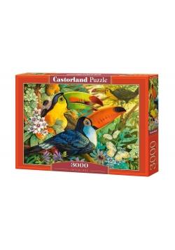 Puzzle 3000 Interlude CASTOR