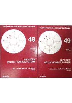 Zeolites: Facts, Figures, Future