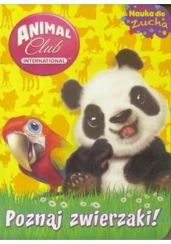 Animal Club. Nauka dla zucha. Poznaj zwierzaki!
