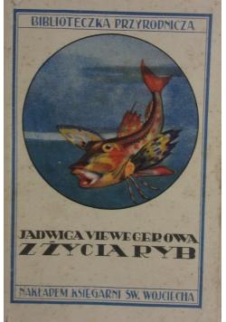 Z życia ryb, 1930r.