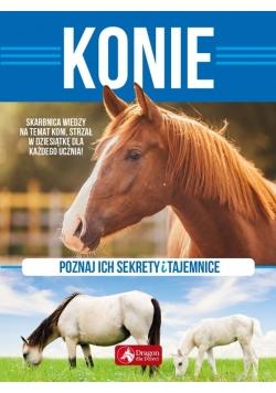Sekrety i tajemnice. Konie