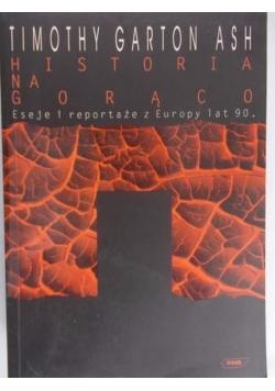 Historia na gorąco. Eseje i reportaże z Europy lat 90