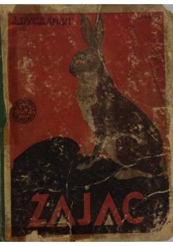 Zając, 1927r.