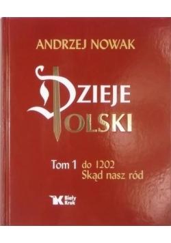 Dzieje Polski, Tom I