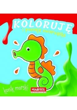 Koloruję i poznaję zwierzątka. Konik morski