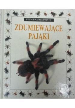 Zdumiewające pająki