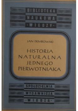 Historia naturalna jednego pierwotniaka, 1948 r.
