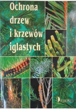 Ochrona drzew i krzewów iglastych