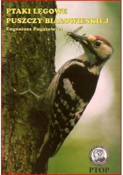 Ptaki lęgowe puszczy Białowieskiej