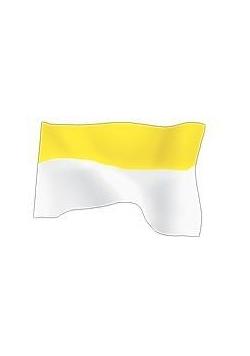 Flaga Papieska 70x112