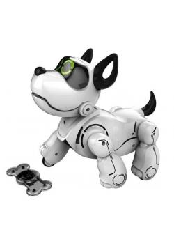 Pupbo