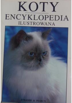 Koty encyklopedia ilustrowana