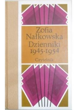 Dzienniki 1945-1954, Tom VI