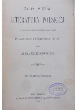 Zarys Dziejów Literatury Polskiej, 1884 r,