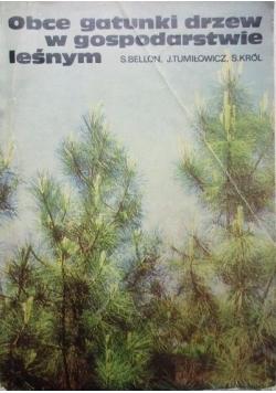 Obce gatunki drzew w gospodarstwie leśnym