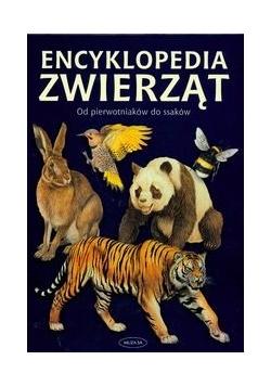 Encyklopedia zwierząt od pierwotniaków do ssaków
