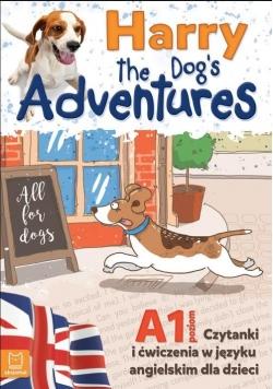 Harry the Dog's Adventures Czytanki i ćwiczenia w języku angielskim dla dzieci