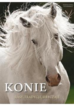 Konie. Rasy, tradycje, obyczaje