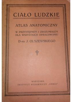 Ciało ludzkie, ok. 1924r.