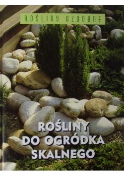 Rośliny do ogródka skalnego