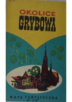 Okolice Gdybowa