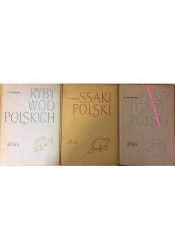 Płazy i gady polski,Ryby wód polskich,Ssaki polski