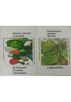 Szklarniowa uprawa warzyw/Uprawa warzyw w gruncie
