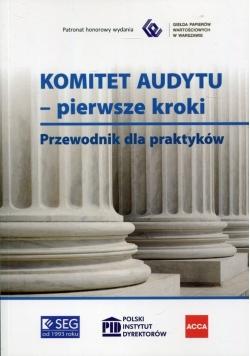 Komitet Audytu pierwsze kroki