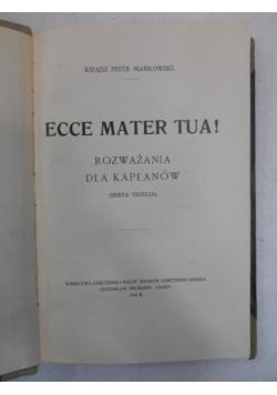 Ecce Mater Tua!, 1916 r.