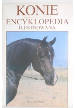 Konie Encyklopedia Ilustrowana