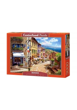 Puzzle 3000 Afternoon in Nice CASTOR